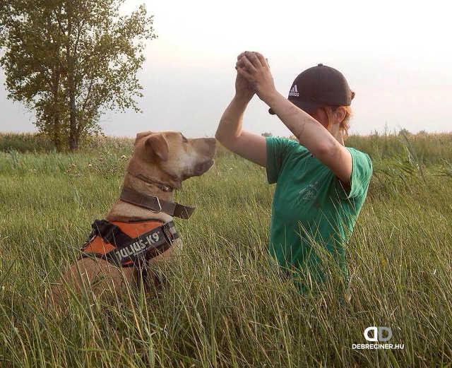 kutya - Vanda