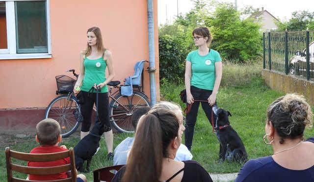 Állatvédő önkéntesek a bűdi (Tiszavasvári) szegregátumban