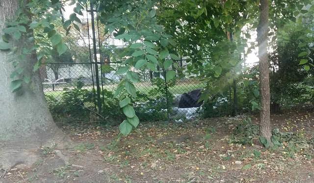 Petőfi tér - szemét - hajléktalan
