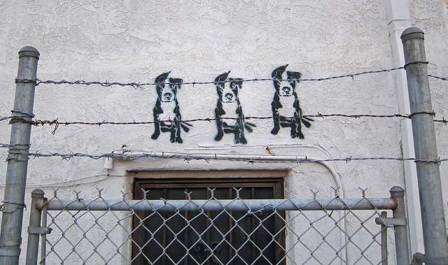 ebtelep - kutyamenhely