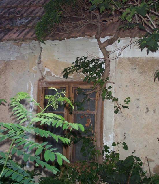 falu - régi ház
