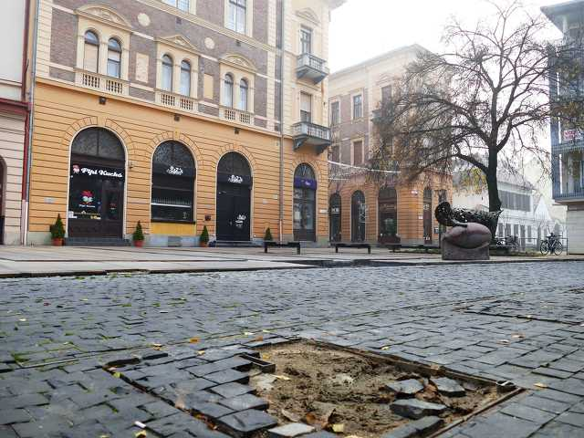 Hal köz, Debrecen - 2019. november 27.